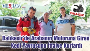 Balıkesir'de Arabanın Motoruna Giren Kedi Yavrusunu İtfaiye Kurtardı