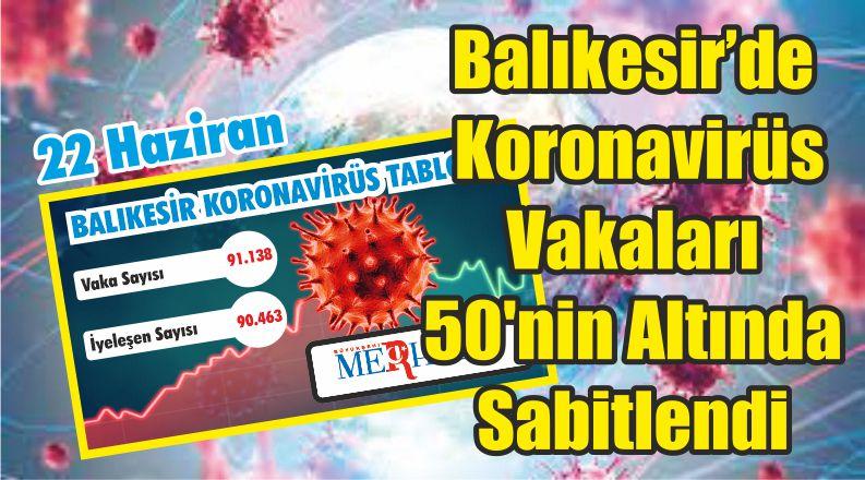Balıkesir'de Koronavirüs Vakaları 50'nin Altında Sabitlendi