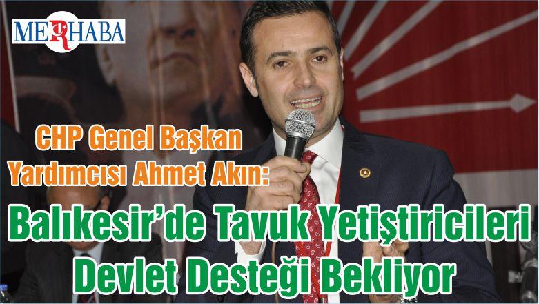 CHP Genel Başkan Yardımcısı Ahmet Akın: Balıkesir'de Tavuk Yetiştiricileri Devlet Desteği Bekliyor
