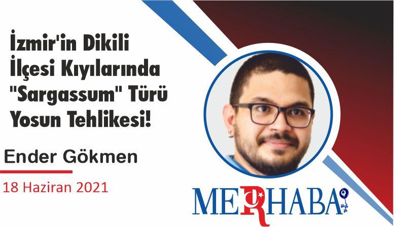 """İzmir'in Dikili İlçesi Kıyılarında """"Sargassum"""" Türü Yosun Tehlikesi!"""
