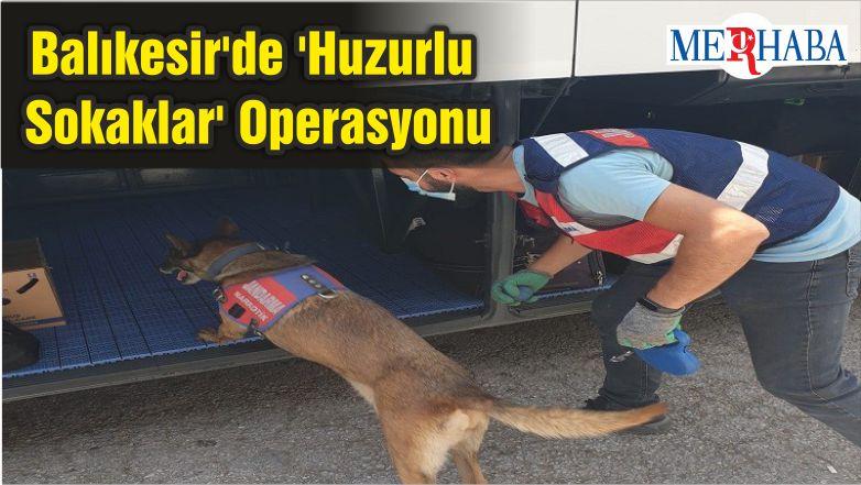 Balıkesir'de 'Huzurlu Sokaklar' Operasyonu