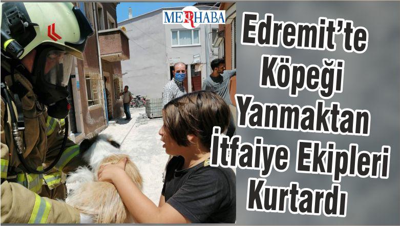 Edremit'te Köpeği Yanmaktan İtfaiye Ekipleri Kurtardı