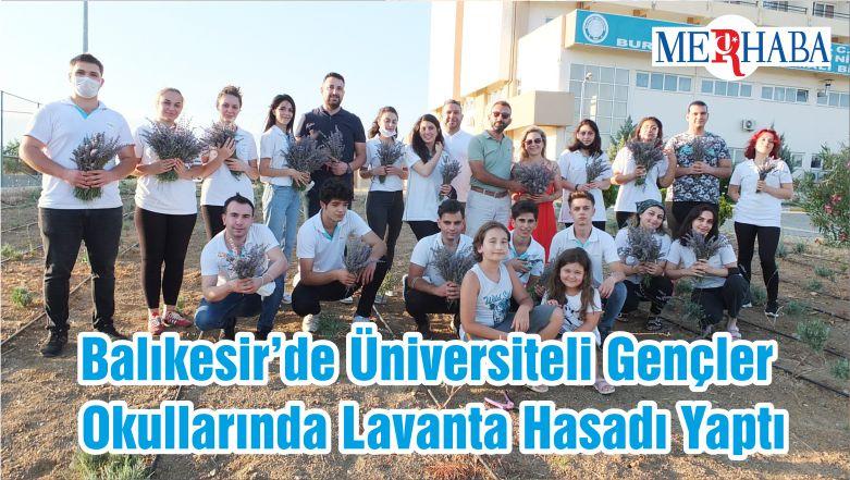Balıkesir'de Üniversiteli Gençler Okullarında Lavanta Hasadı Yaptı