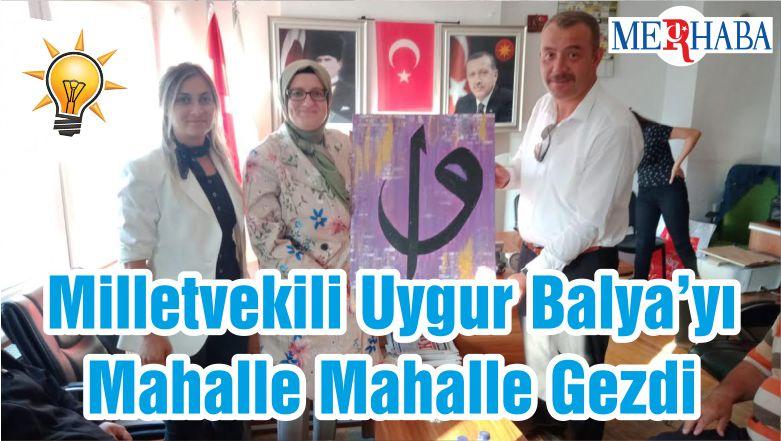 Milletvekili Uygur Balya'yı Mahalle Mahalle Gezdi