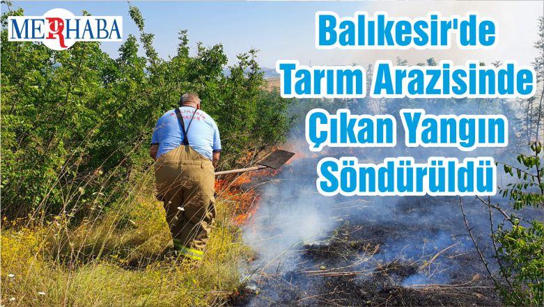 Balıkesir'de Tarım Arazisinde Çıkan Yangın Söndürüldü