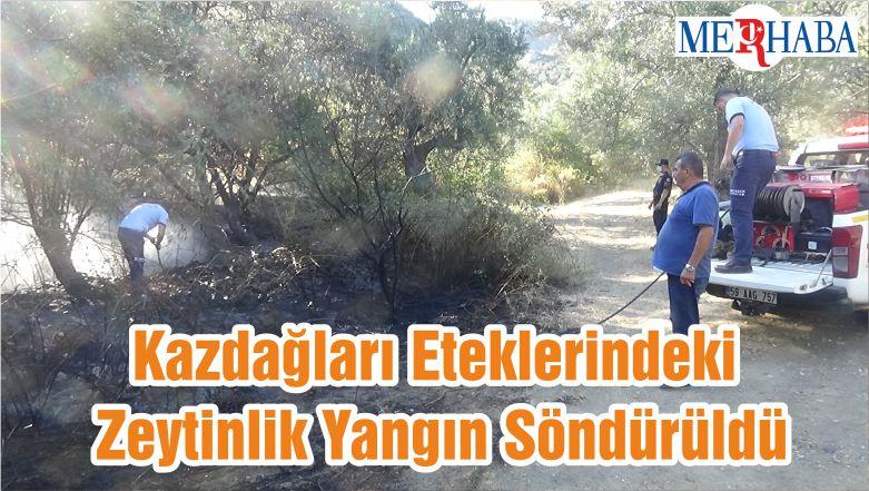 Kazdağları Eteklerindeki Zeytinlik Yangın Söndürüldü