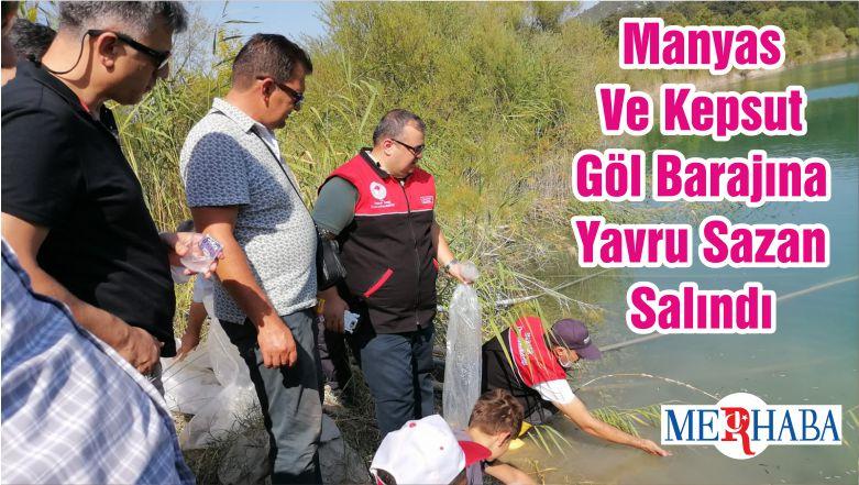 Manyas Ve Kepsut Göl Barajına Yavru Sazan Salındı