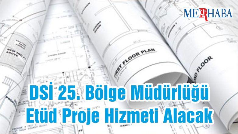 DSİ 25. Bölge Müdürlüğü Etüd Proje Hizmeti Alacak
