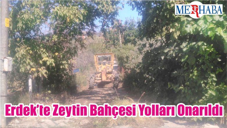 Erdek'te Zeytin Bahçesi Yolları Onarıldı