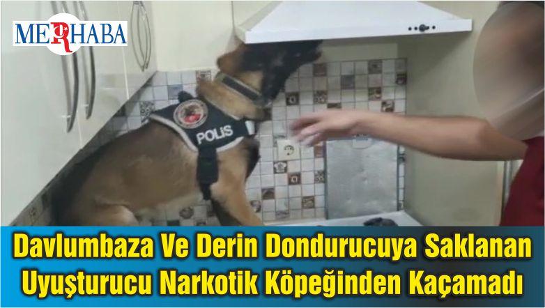 Davlumbaza Ve Derin Dondurucuya Saklanan Uyuşturucu Narkotik Köpeğinden Kaçamadı