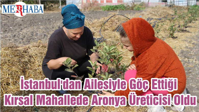 İstanbul'dan Ailesiyle Göç Ettiği Kırsal Mahallede Aronya Üreticisi Oldu