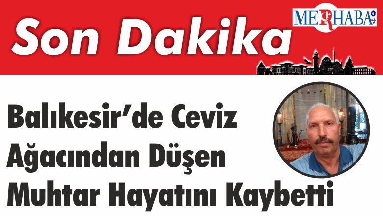 Balıkesir'de Ceviz ağacından düşen muhtar hayatını kaybetti